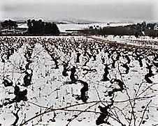 Winter in Bierzo