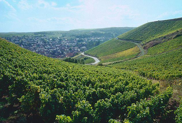 nahe-wijngaarden
